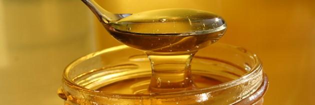 Fatores que impactam na qualidade do mel